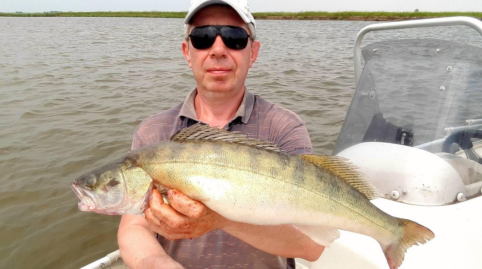 Рыбалка в сентябре на ахтубе