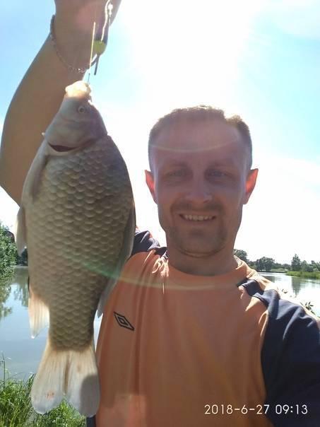Палецкое озеро (полецкое) – одинцовский р-н: рыбалка, на карте, отзывы