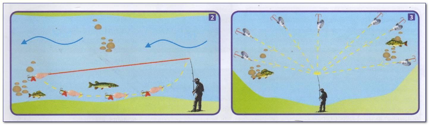 Ловля судака на джиг - тактика и техника ловли