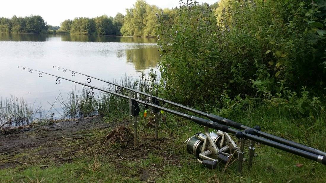 Рыбалка на истринском водохранилище