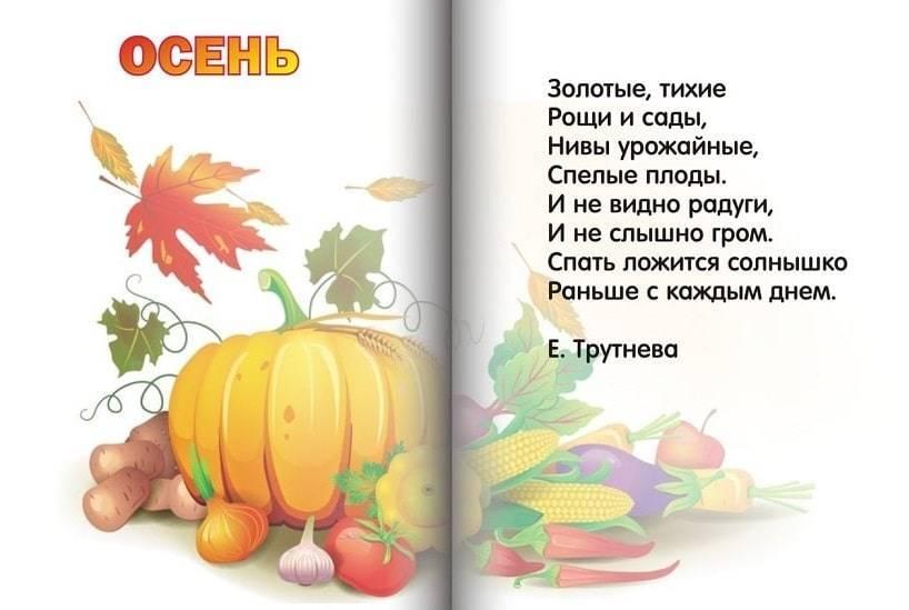 Стихи про осень для воспитанников детского сада (4-5 лет) | всё для праздника