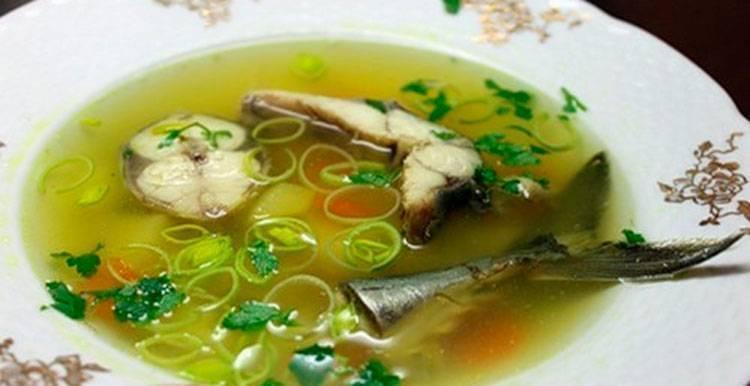 Как приготовить рыбный суп в домашних условиях: простые рецепты ухи из свежемороженой скумбрии