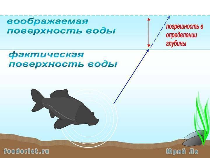 При каком давлении лучше клюет рыба? оптимальное атмосферное давление для рыбалки летом на карася и карпа, плотвы и для ловли другой рыбы