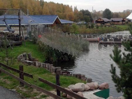 Рупасовские пруды (мытищи) - отличное место для отдыха и рыбалки