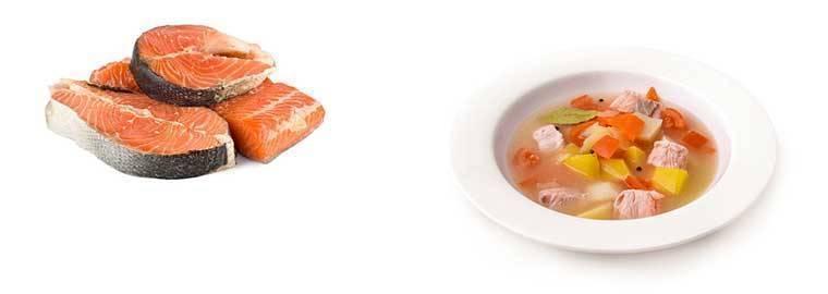 Рецепт суп из семги с картофелем. калорийность, химический состав и пищевая ценность.