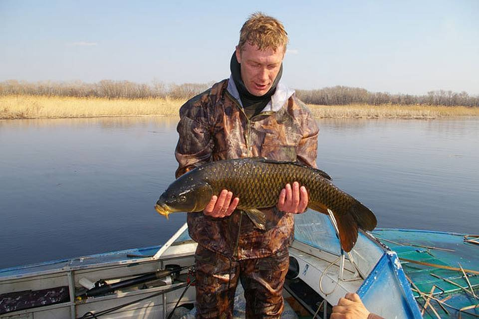 Рыбалка в лужском районе. рыболовный форум и отчеты