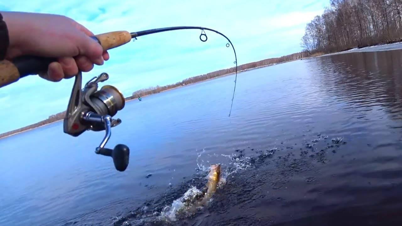Рыбалка на спиннинг для начинающих