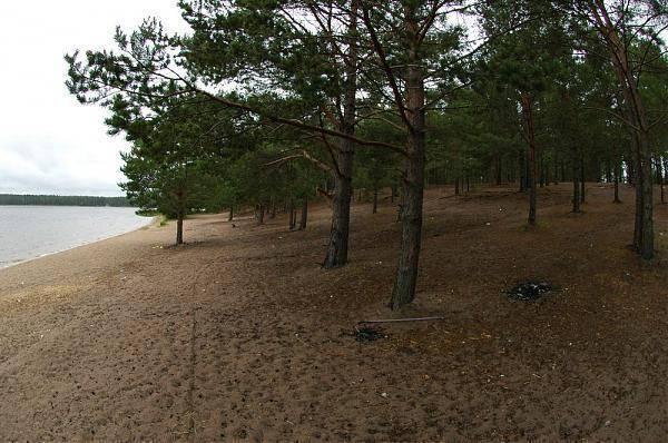 Озеро белое: природный водоем в сердце кургальского полуострова