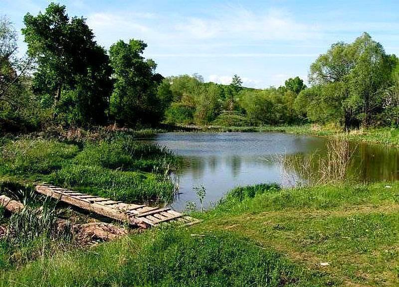 Рыбалка в казани: где ловить, лучшие рыбные места в зеленодольске, на богородском озере