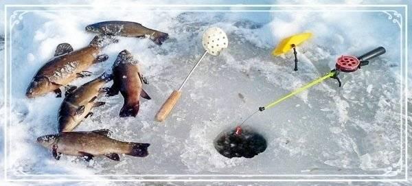 Рыбалка в карелии дикарем: куда поехать, лучшие места, карта