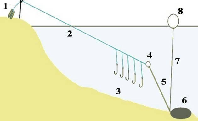 Рыбалка на резинку: особенности, изготовление, техника ловли