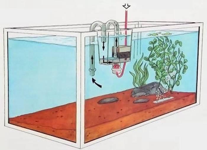 Сифон для аквариума своими руками: как сделать пылесос для чистки грунта в аквариуме, а также, можно ли делать самодельное электрическое устройство