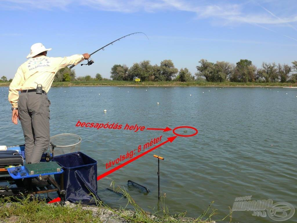 Платная летняя рыбалка на щуку, карпа, окуня, плотву и осетра