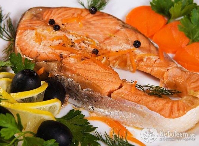 Семга – калорийность, пищевая ценность, полезные свойства и вред