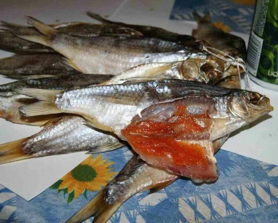 Вобла вяленая — фото, как правильно солить воблу, вялить и сушить эту рыбу