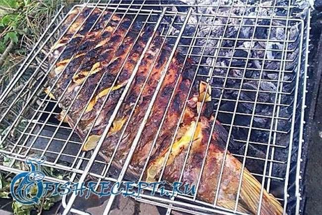 Карп на мангале: как приготовить на решетке на углях, рецепты маринада