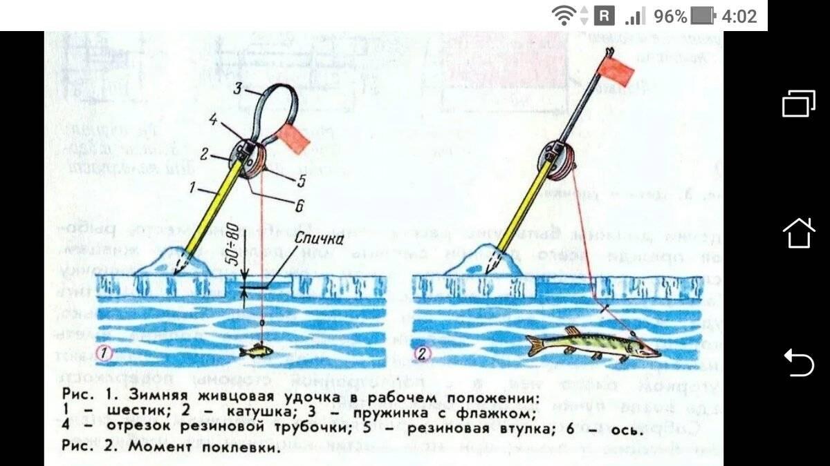 Зимняя поплавочная удочка для ловли плотвы: элементы снасти и оснастка