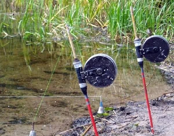 Снасти для ловли карася: рейтинг лучших, видео поплавочной ловли