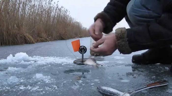 Ловля щуки зимой на жерлицы и по первому льду: места и тактика ловли