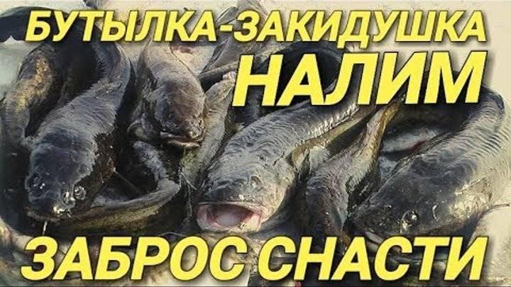 Зимняя жерлица-перевертыш. фото-инструкция. принцип ловли