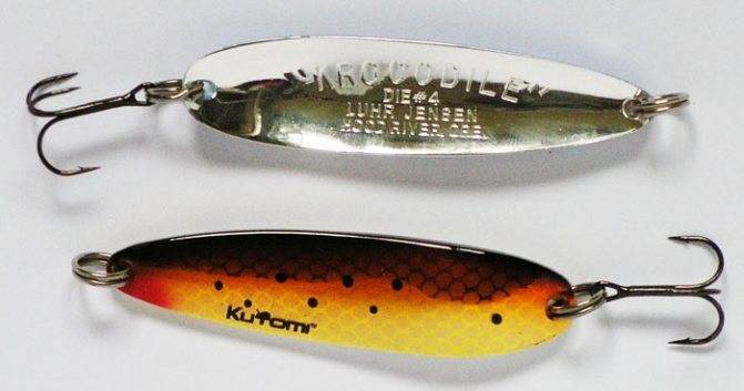 Как выбрать спиннинги и катушки для рыбалки