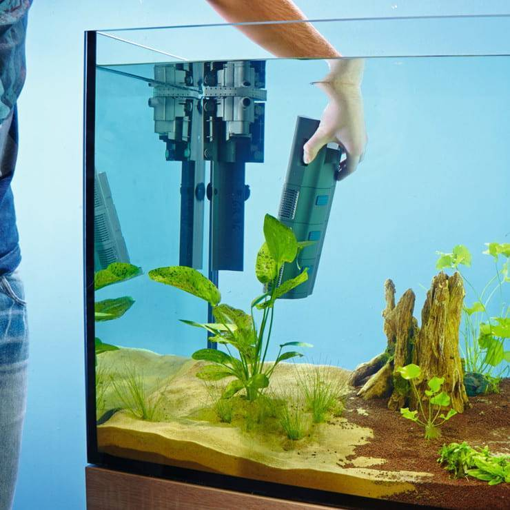 Как правильно установить внутренний фильтр в аквариуме | аквариумные рыбки