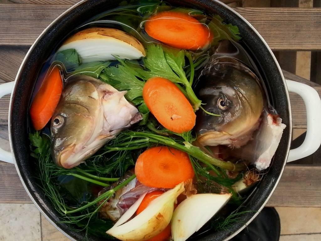 Уха из речной рыбы / рыбные супы / tvcook: пошаговые рецепты с фото