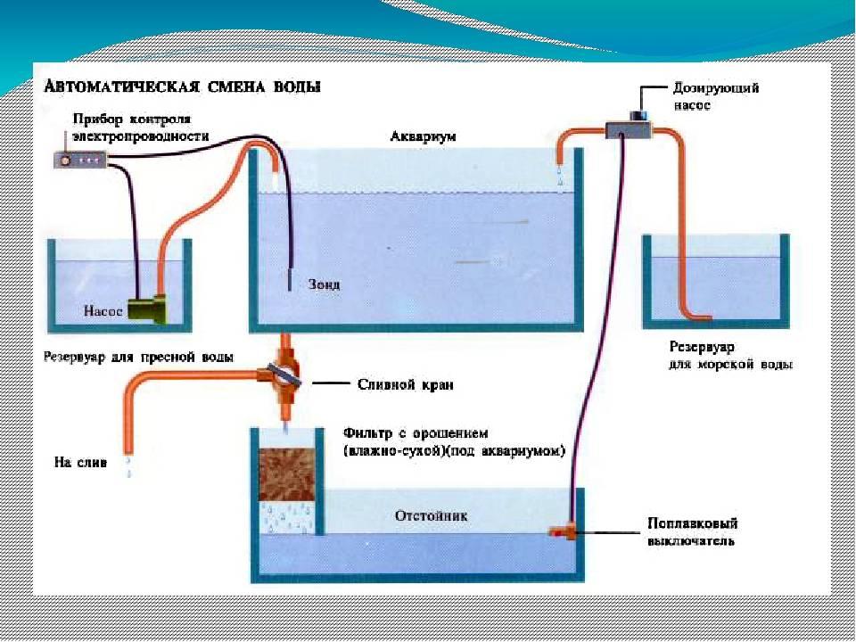 Всё об ph воды в аквариуме