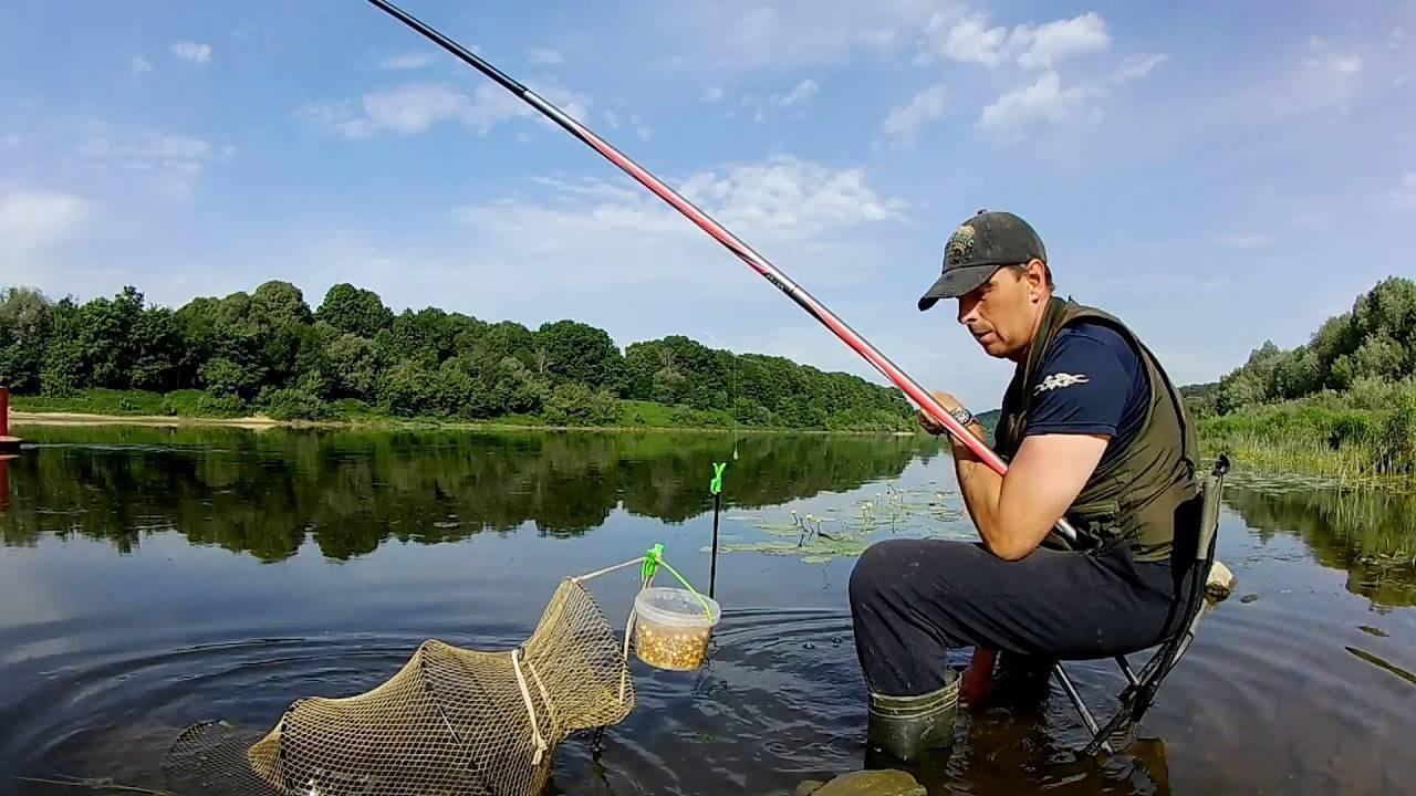 Донка для ловли на течении: что ловят на донную снасть на реке