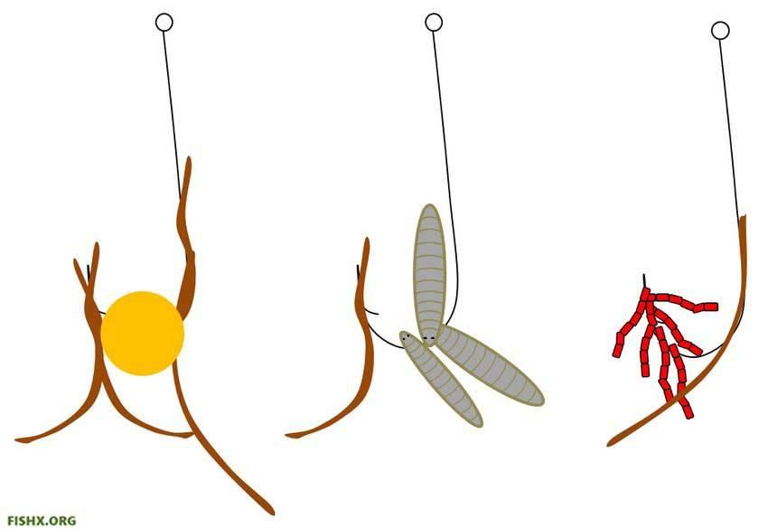 Как насаживать опарыша на крючок правильно для плотвы и карася