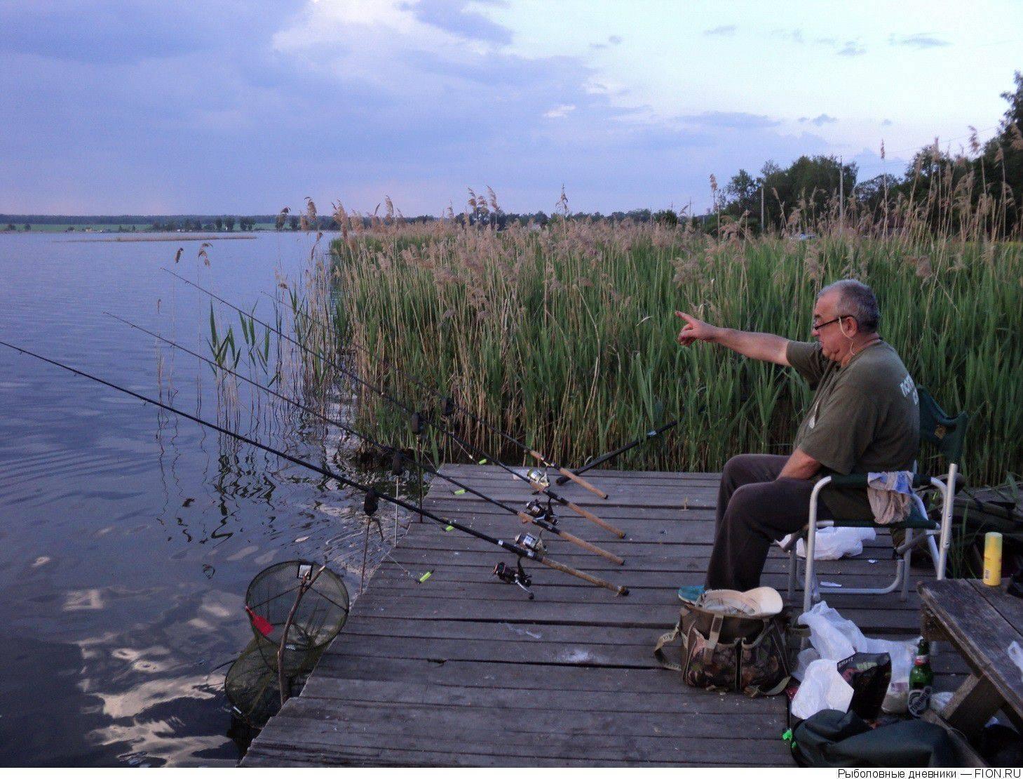 Городская рыбалка на днепре — ловля на фидер » тихий омут