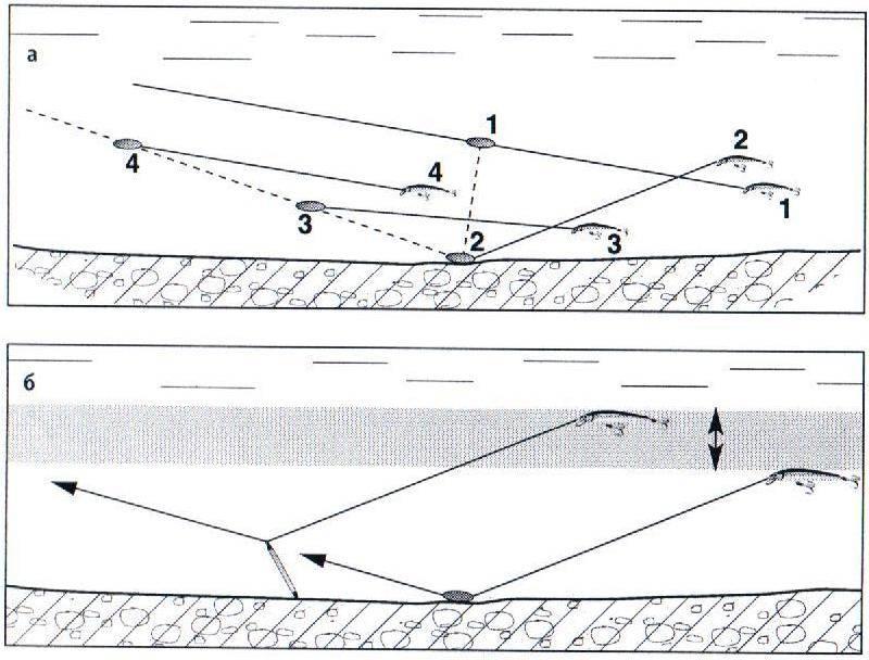 Ловля на воблер для начинающих: техника и способы проводки на щуку осенью