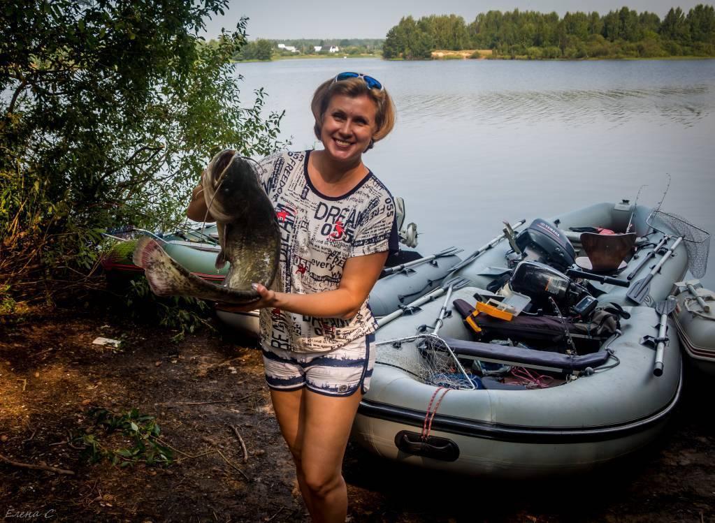 Базы отдыха на рыбинском водохранилище – условия и цены