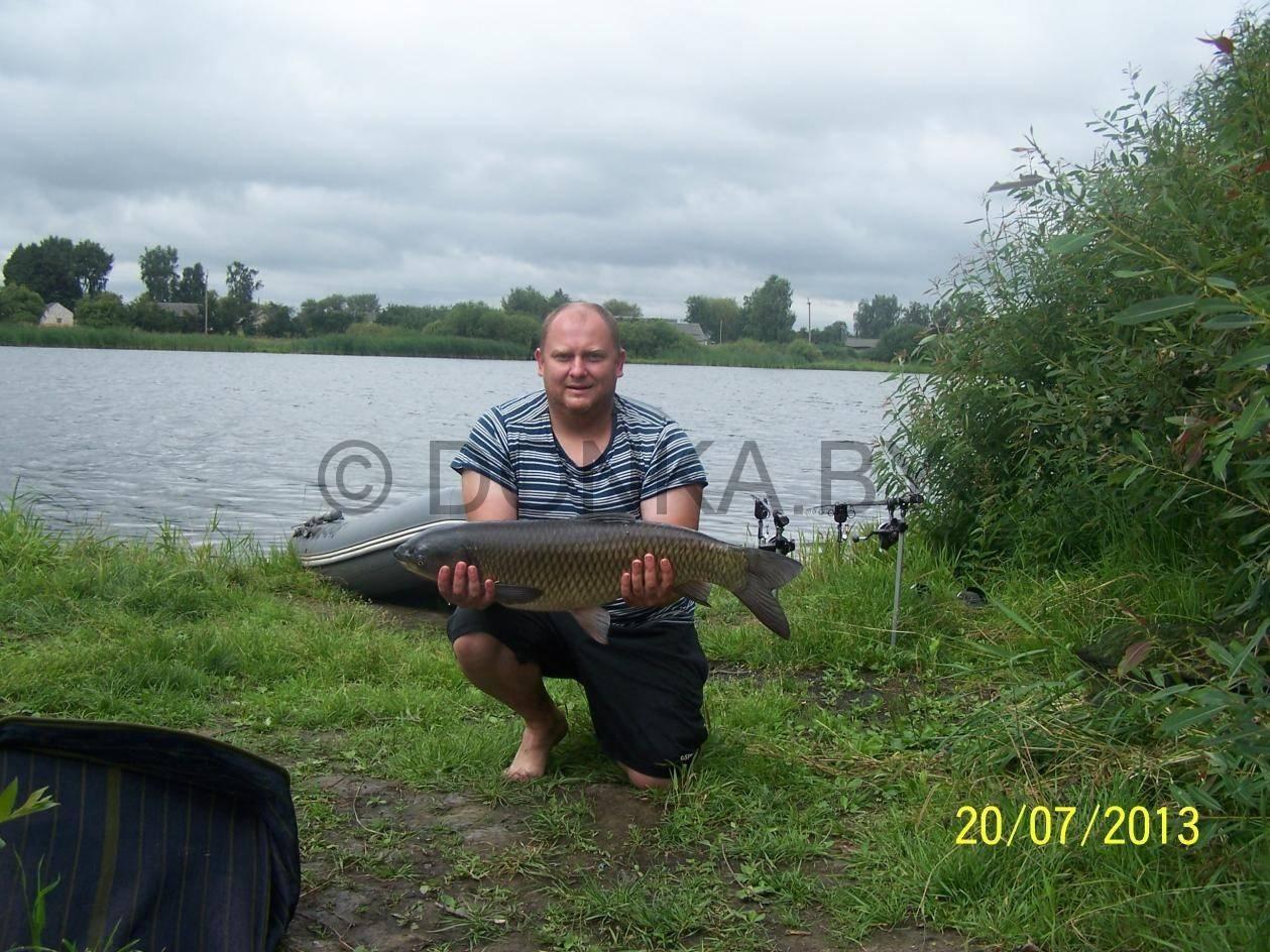 Запрет на рыбалку в беларуси в 2020 году