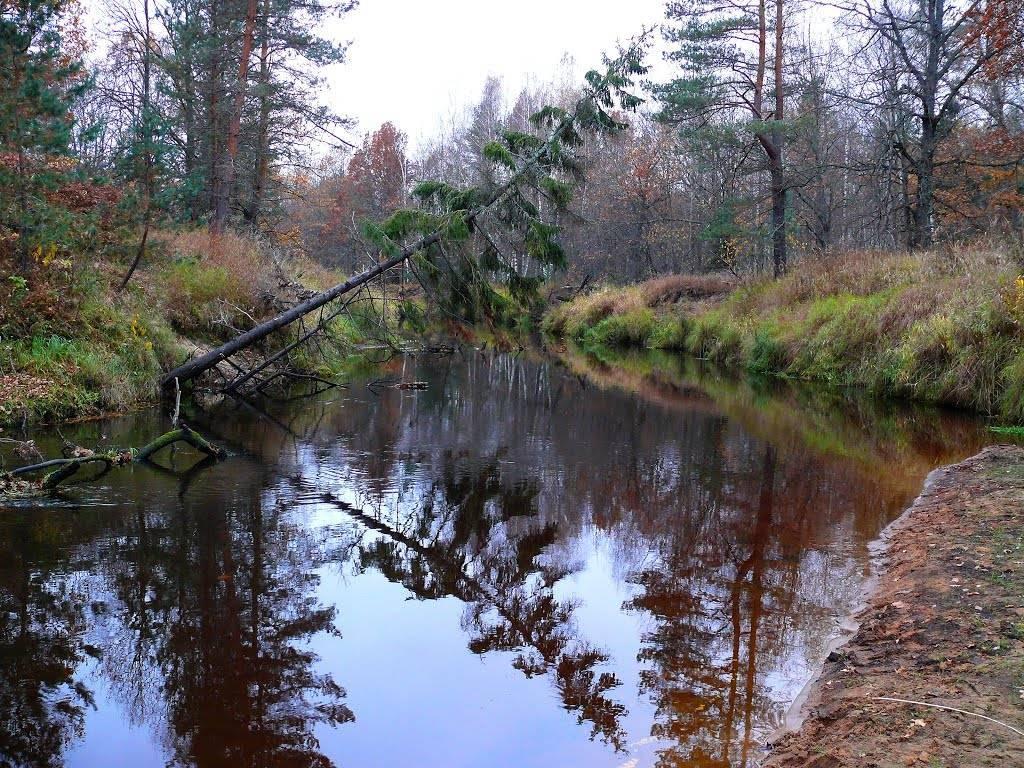 Реки рязанской области | команда кочующие
