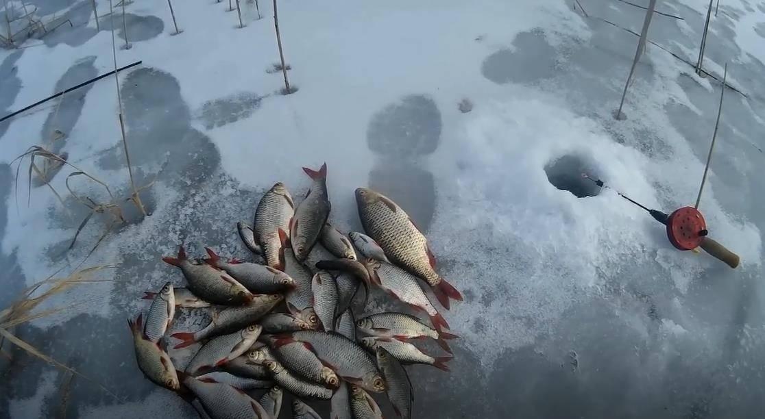 Ловля красноперки зимой - на рыбалке!