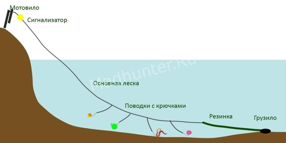 Как поймать голавля на спиннинг? рассмотрим тонкости ловли этого бойца