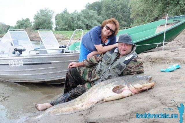 Рыбалка на хищника в трехречье: советы, снасти и приманки