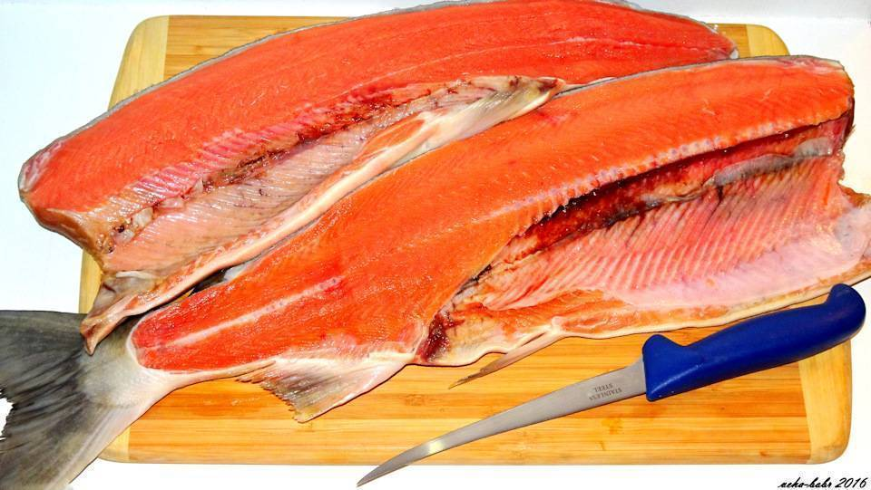 Рыба кета: полезные свойства, химический состав, сколько калорий, противопоказания