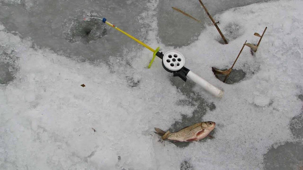 ᐉ как ловить карася зимой: по первому льду, в глухозимье и по последнему льду - ✅ ribalka-snasti.ru