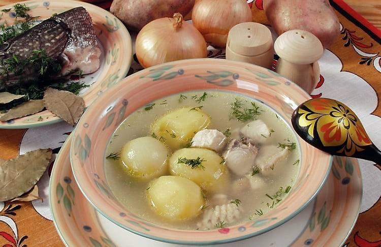 Рыбацкая уха из щуки и классический рецепт простого блюда   cherpachok.com