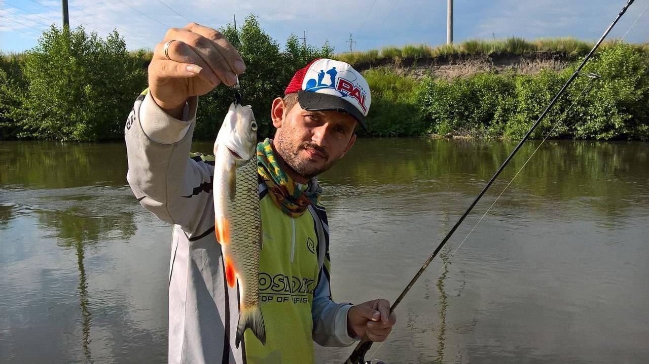 ✅ рыбалка в ровном саратовской области - danafish.ru
