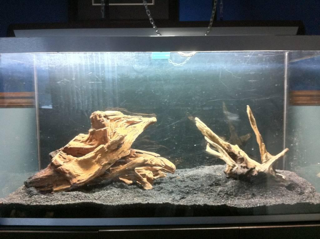 Коряга для аквариума своими руками: как сделать самому? из какого дерева лучше изготовить? как подготовить и обработать древесину?