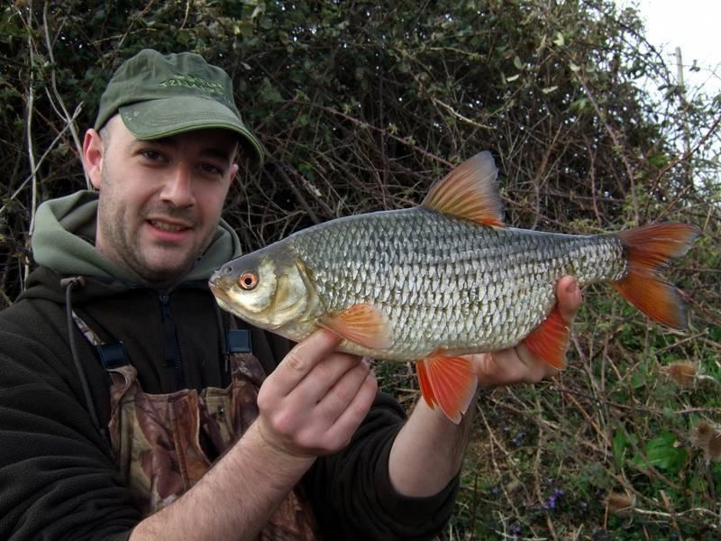 Как ловить рыбу сорожку? – суперулов – интернет-портал о рыбалке