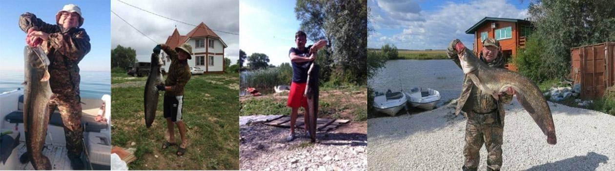 Ловля сома с берега и снасть на него – все лайфхаки и советы для рыбалки на одном сайте