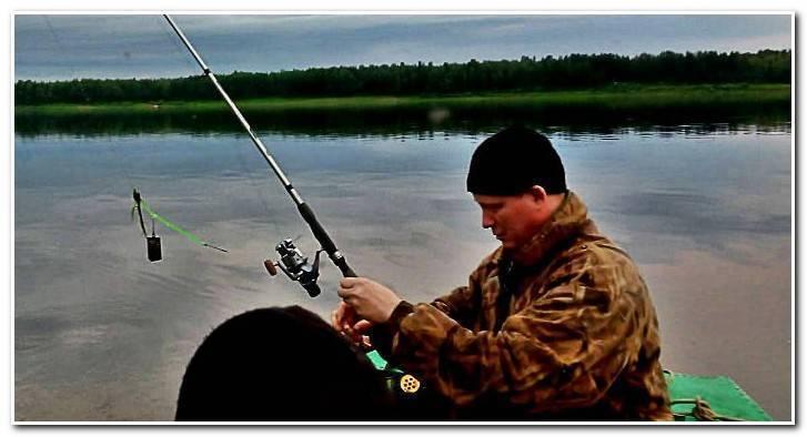 Как ловить язя - где и на что? ловля на удочку, спиннинг и фидер