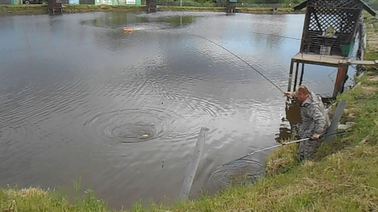 Платная и бесплатная рыбалка в раменском районе московской области – суперулов – интернет-портал о рыбалке