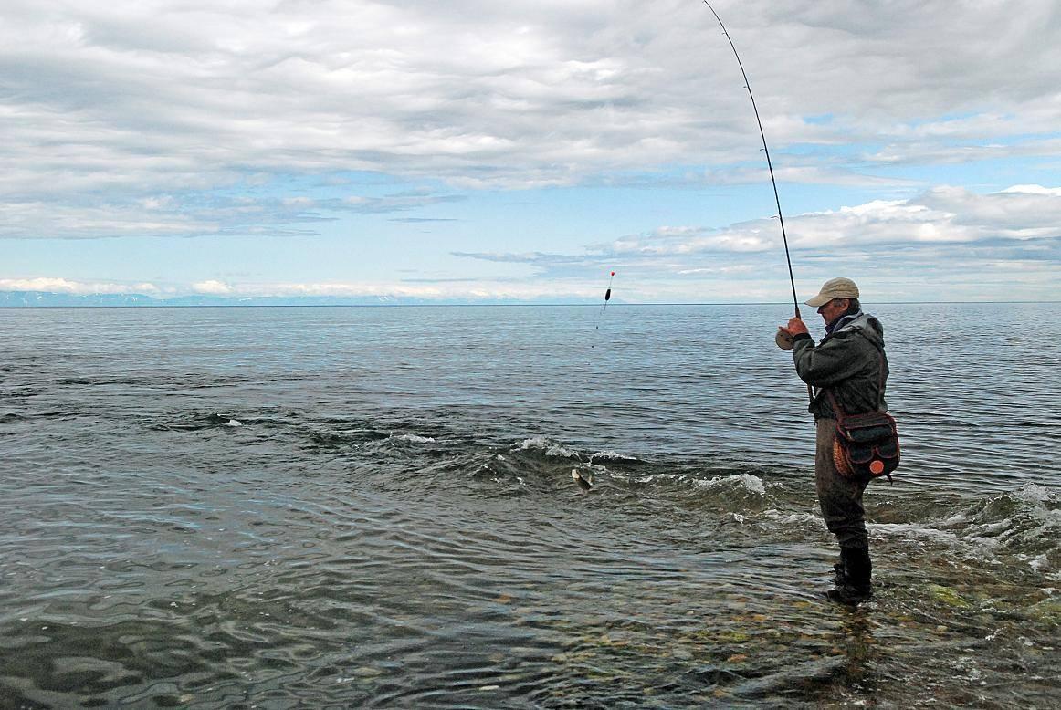 Рыбалка на озере байкал и все ее тонкости - подводный мир