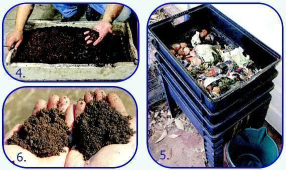 Как разводить червей для рыбалки в огороде + фото и видео