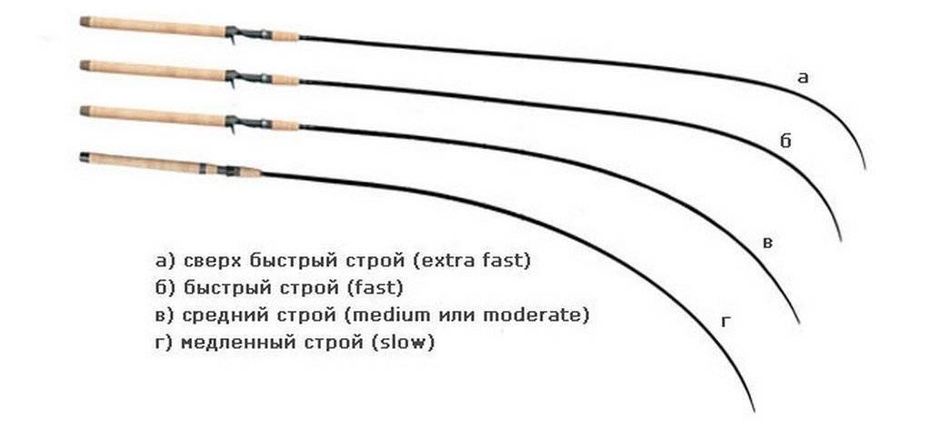 Как выбрать спиннинг новичку: какой длины и хараткеристиками